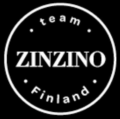 Annual Zinzino Event 2013 Gothenburg - www.teamzinzino.fi